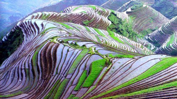 Źródło: photos-gratuites.org