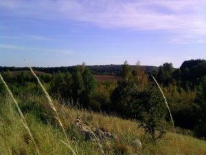 Warunki terenowe.  Autor: Sławek Stefański