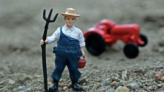 farmer-1857564_1920